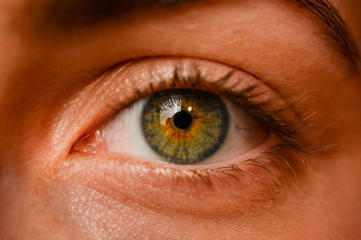 Oczy to charakterystyczny narząd. To otóż to dzięki nim doświadczamy.